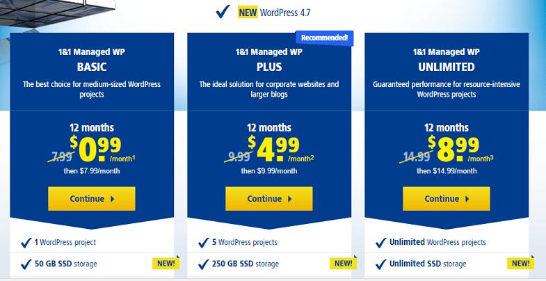 1&1 WordPress Hosting plan