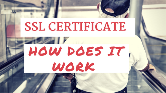 SSL certificate ow does it work