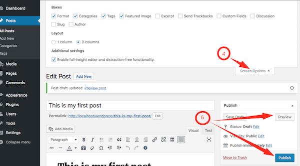 Publishing a Post in WordPress